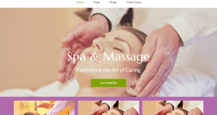 Free Spa Salon WordPress Themes