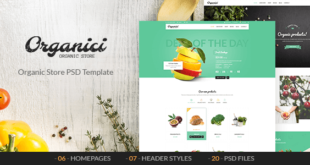 Best Retail PSD Templates