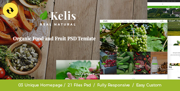 Kelis - Organic Food And Fruit Store PSD Template