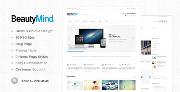 Delphinus - Creative eCommerce PSD template
