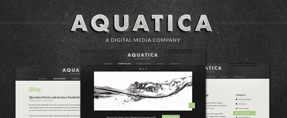 Aquatica Creative PSD Template