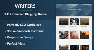 SEO Friendly WordPress Themes