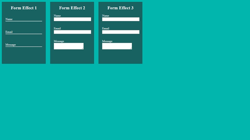 Different CSS Form effects