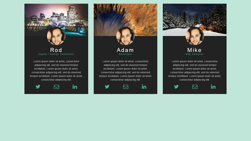 Profile cards with hover effect