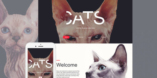 Animals Moto CMS 3 Templates