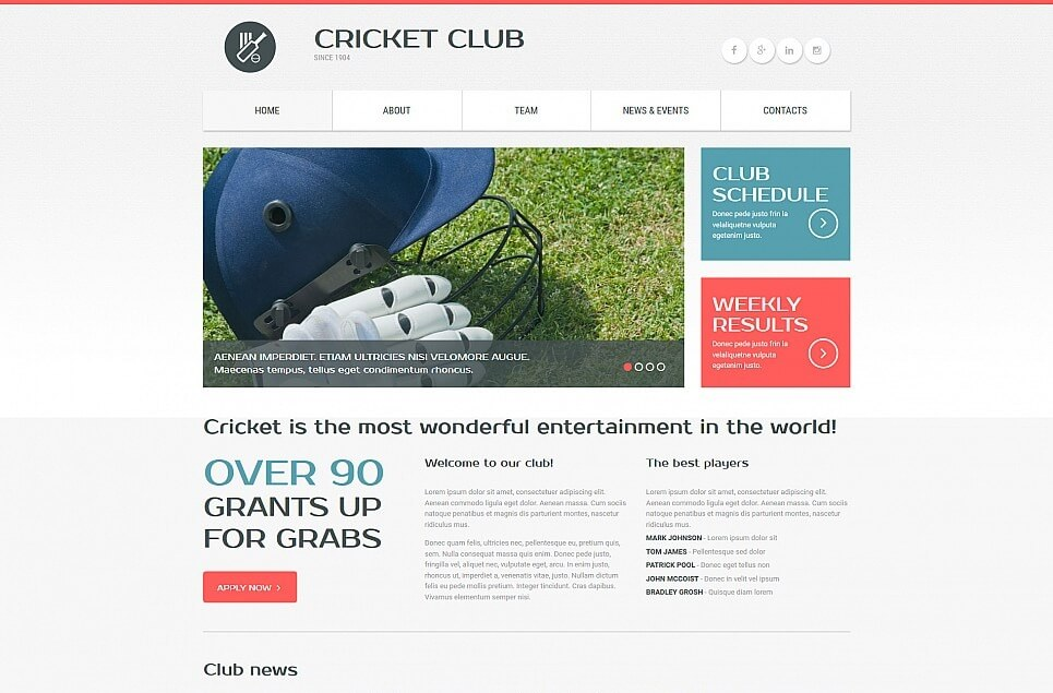 Cricket Responsive Moto CMS 3 Template