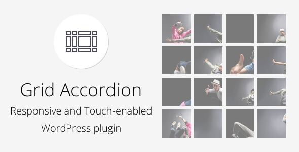 Grid Accordion - Responsive WordPress Plugin