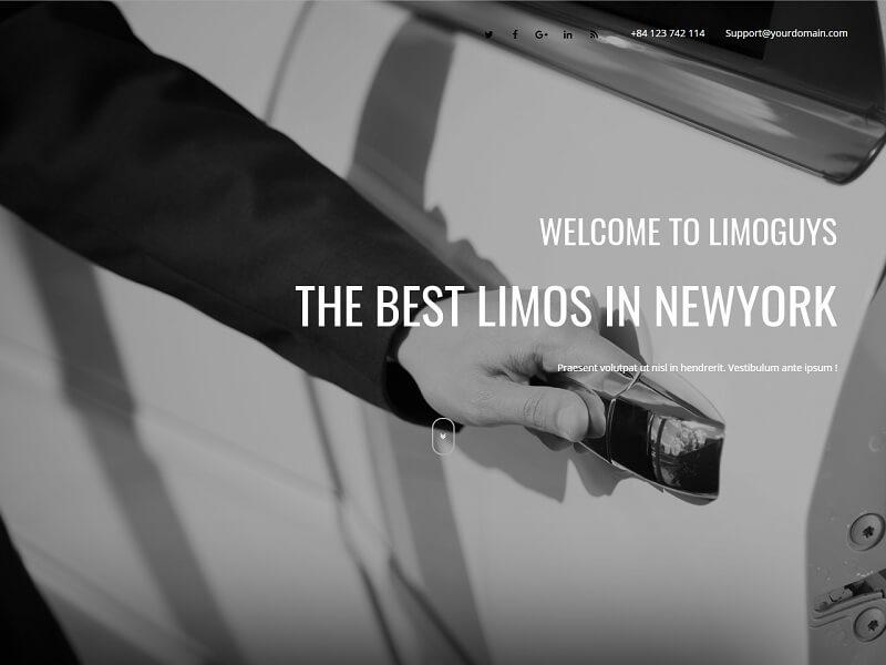 Limoguys