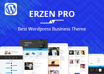 erzen pro wordpress theme