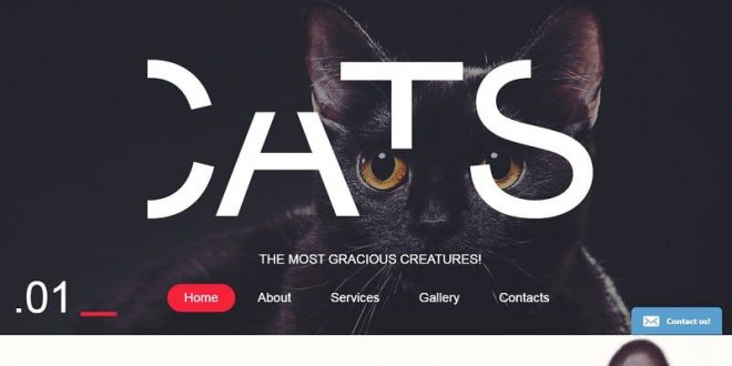 Animals Html Website Templates