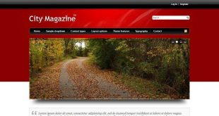 Blog Magazine Drupal Themes