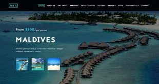 Travel Drupal Website Templates