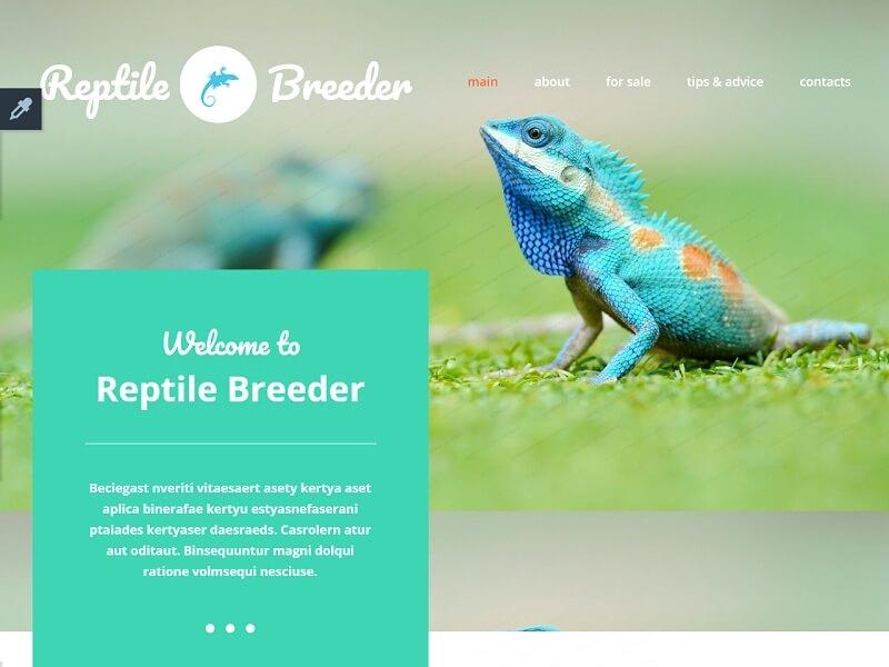 Reptile Breeder