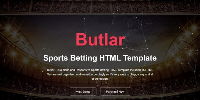 21+ Best Sports Html Website Templates 2019