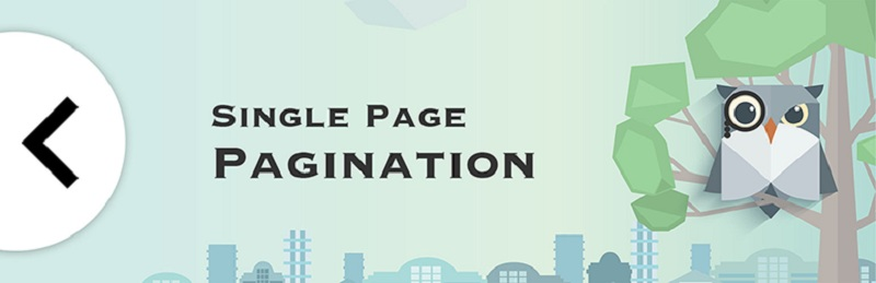 Single Page Pagination