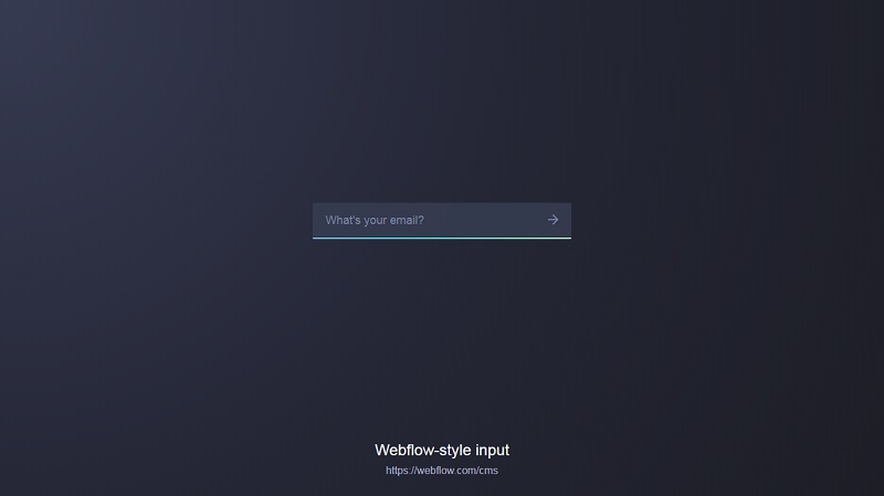 Webflow-Style Email Input