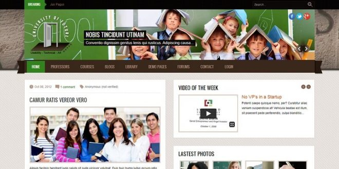 Best Free Drupal Themes