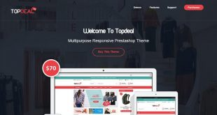 Business PrestaShop Themes