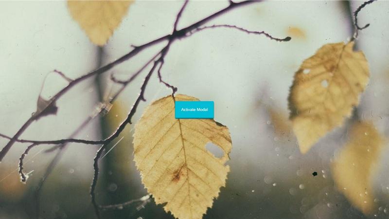 Blurred Background Modal Window