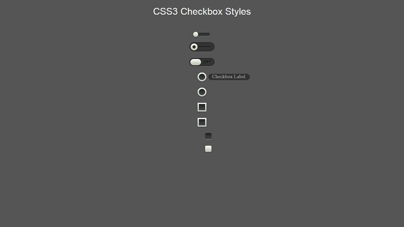 CSS Checkbox Styles