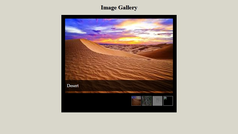 CSS Gallery Assignment Solution