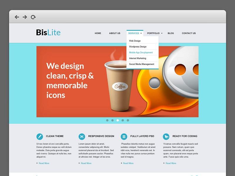 BisLite