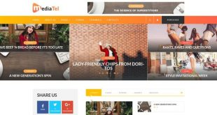 WP Themes to Start a Successful Media Project