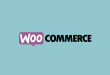 Best WooCommerce Plugins for Your Store